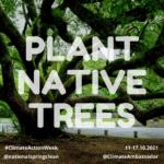 Plant native trees